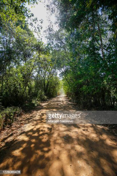 road in itamonte, minas gerais, brazil - marcelo nacinovic stock pictures, royalty-free photos & images