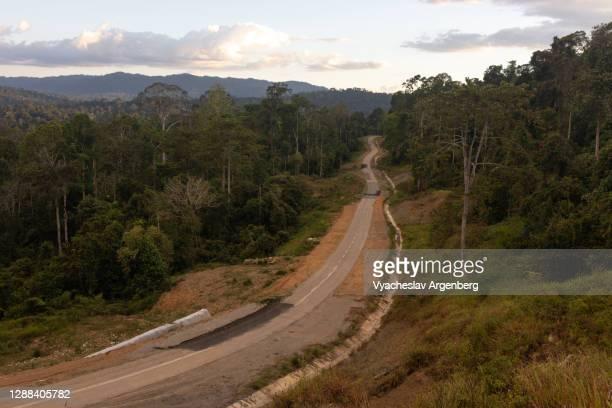 road in maliau basin, borneo, malaysia - argenberg bildbanksfoton och bilder