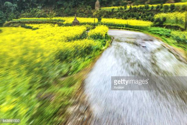 Road in motion in Country side