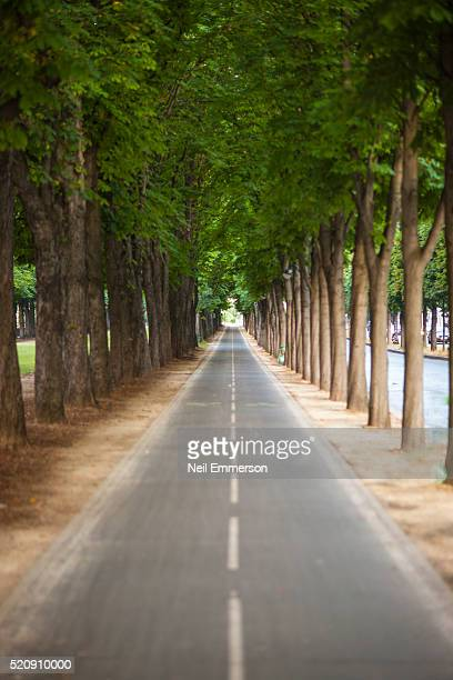 Road in Paris, France