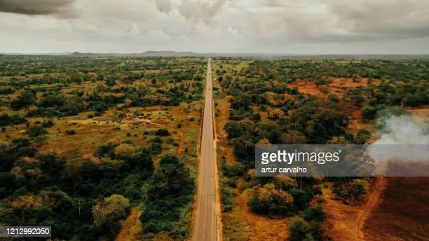 road in the african wild landscape from above - angola bildbanksfoton och bilder