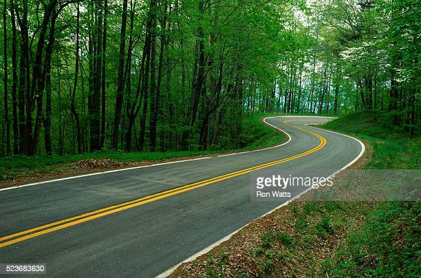 road in the blue ridge mountains - blue ridge parkway stock pictures, royalty-free photos & images