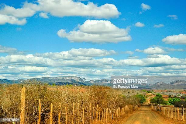 road in the brazilian interior with blue sky and mountains in the background, iraquara, chapada diamantina, brazil - parco nazionale di chapada diamantina foto e immagini stock