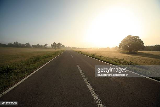 Road in the morning, Aomori Prefecture, Honshu, Japan