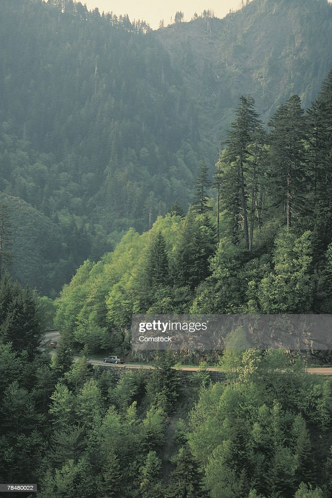 Road in the mountains : Stock Photo