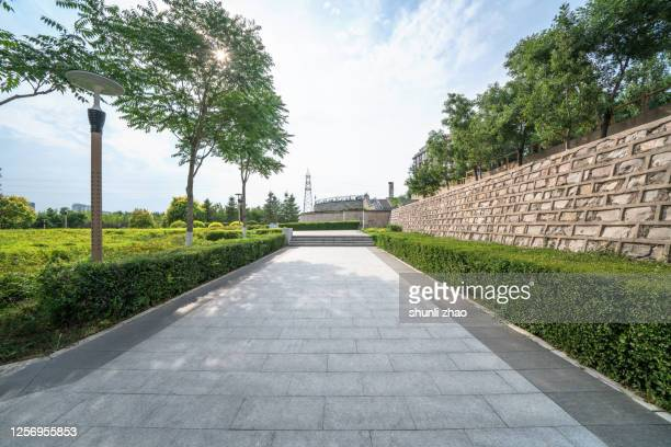 road in the park - 角度 ストックフォトと画像