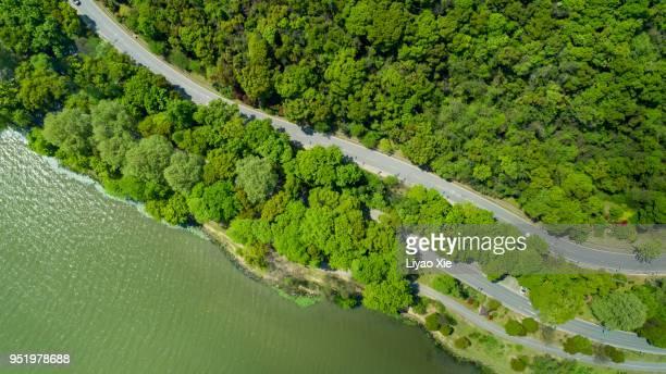 road in the summer forest aerial view - liyao xie stockfoto's en -beelden