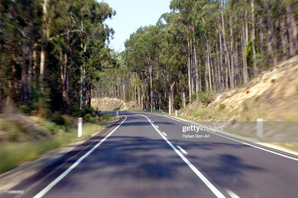 Road in victoria australia : Stock Photo