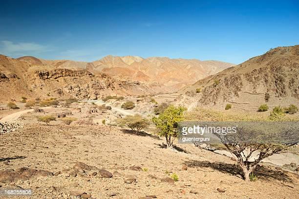 Straße in die Wüste, Äthiopien Danakil