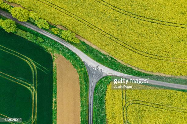 road junction through agricultural fields - cultivated land stock pictures, royalty-free photos & images
