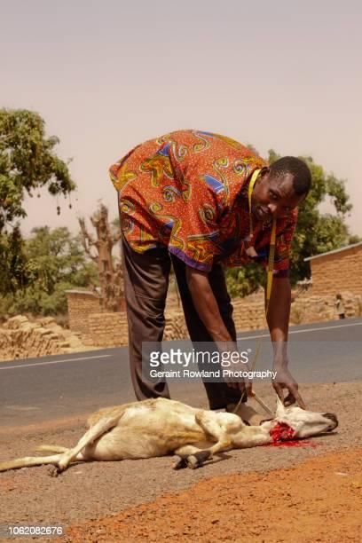 Road Kill, Mali