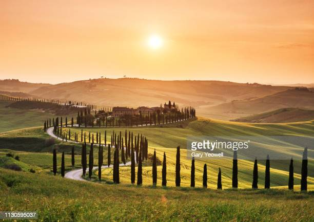 road leading through tuscan landscape at sunset - italie photos et images de collection