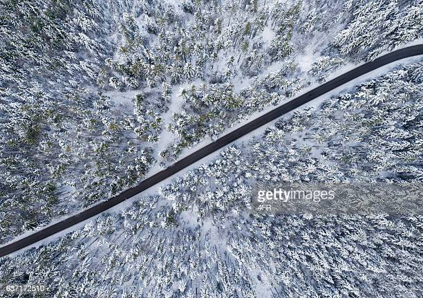 Road leading through Winter Forest, Bird's-Eye View