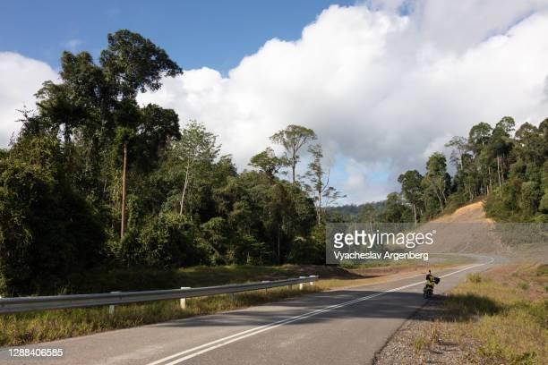 road leading to maliau basin, borneo, malaysia - argenberg bildbanksfoton och bilder