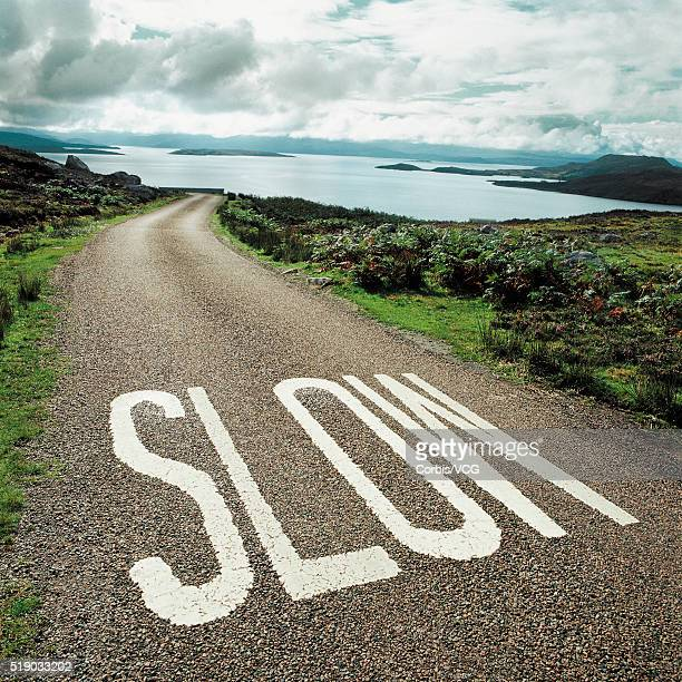 Road leading to the ocean with 'slow' painted on it