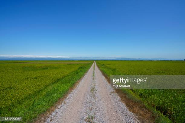 road leading to the sky - thoroughfare stock pictures, royalty-free photos & images