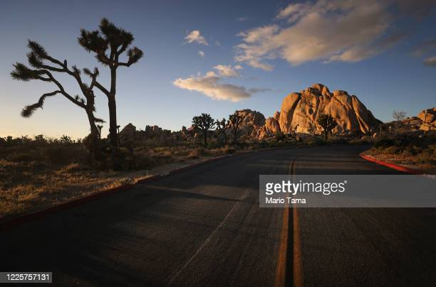 Road leads toward rock formations in Joshua Tree National Park one day after the park reopened after being closed for two months due to the...