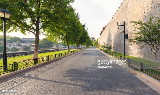 road lined by green trees - avenue stock pictures, royalty-free photos & images