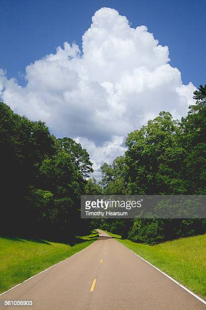 road lined with trees, clouds beyond - timothy hearsum fotografías e imágenes de stock