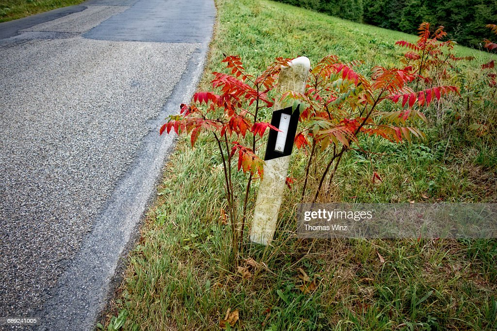 Road marker with reflector : Stock Photo