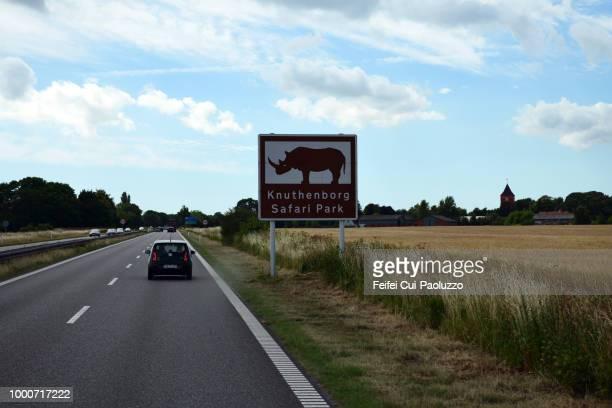 road near knuthenborg safaripark, lolland island, denmark - feifei cui paoluzzo stock pictures, royalty-free photos & images