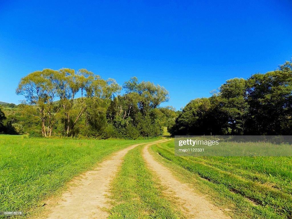 Road on meadow : Stock Photo