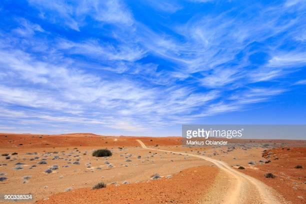 Road, Palmwag concession, Damaraland, Kunene region, Namibia