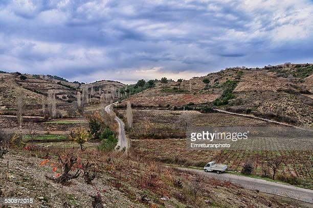 road passing thoruough vinyards - emreturanphoto stockfoto's en -beelden