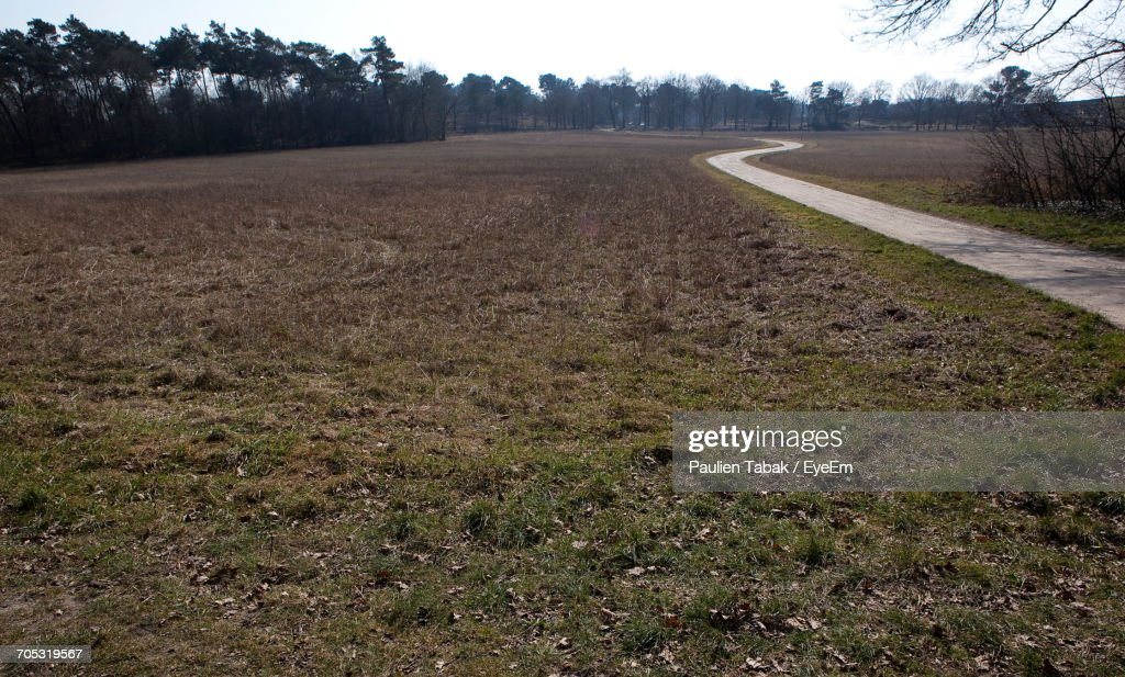 Road Passing Through Field : Stockfoto