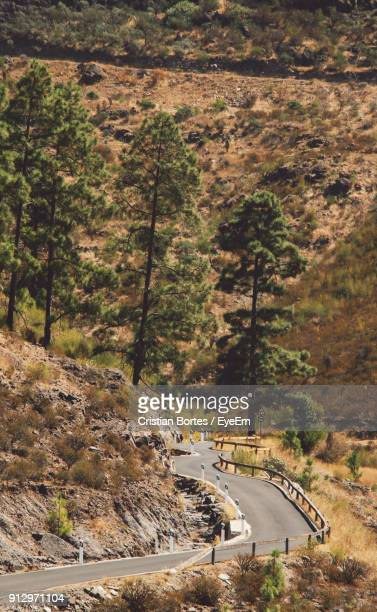 road passing through forest - bortes cristian stock photos and pictures