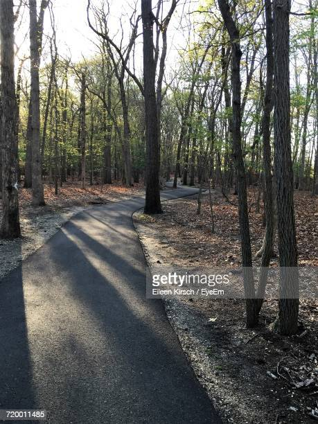 road passing through trees - eileen kirsch stock pictures, royalty-free photos & images