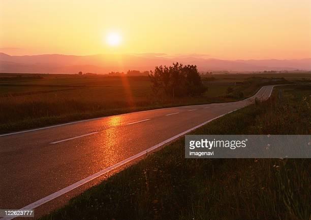 road - 平地 ストックフォトと画像