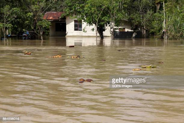 A road seen covered by water caused by the flood Heavy rain and strong winds struck Aceh Province causing massive flooding in Aceh Utara District...
