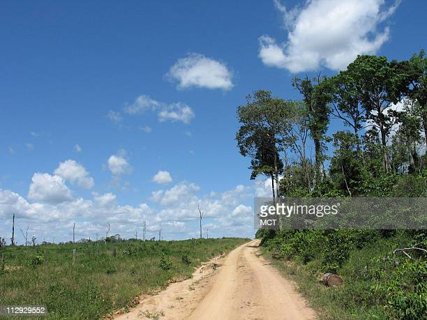 A road separates the standing Amazon rain forest and a patch that has been deforested June 21 near Tailandia Brazil Brazil is the world's fourth...
