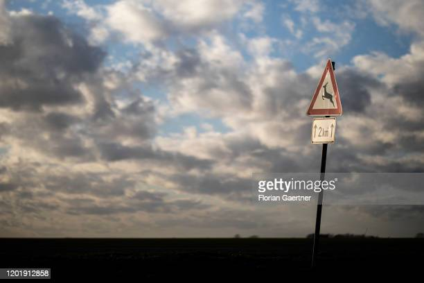 A road sign for wild animals crossing is pictured on February 17 2020 in Senzke Germany