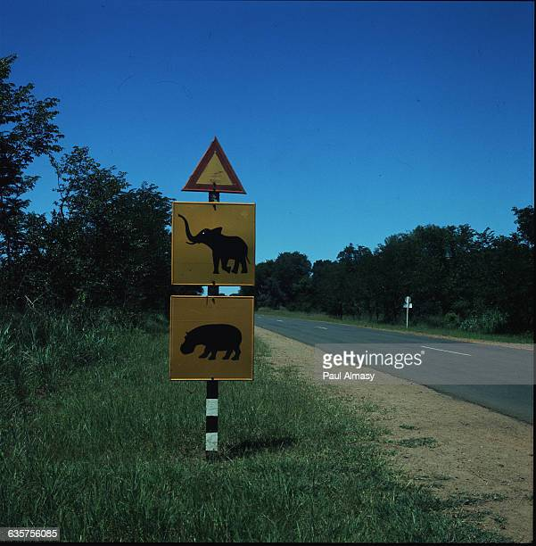 A road sign on the route between Mankoya and Mumbwa in Zambia It advises caution on the part of drivers due to elephants and hippos roaming