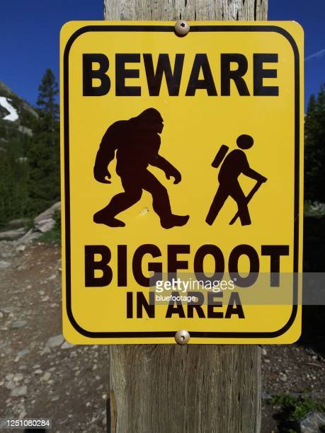 road sign warning of bigfoot - bigfoot stock pictures, royalty-free photos & images