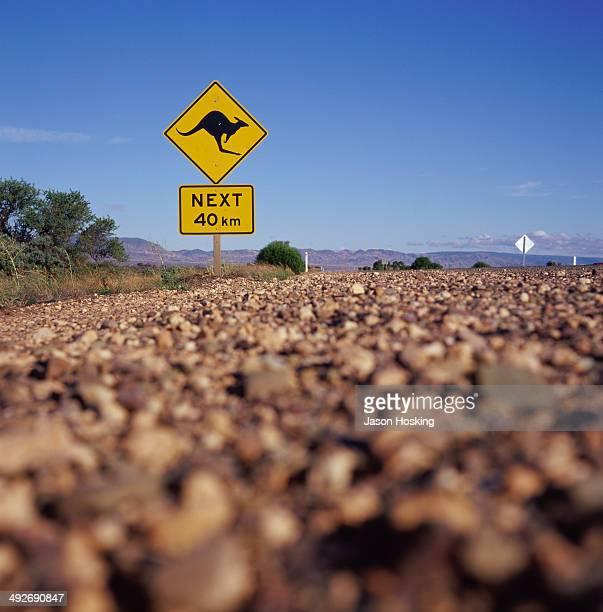 Road sign warning of kangaroos crossing, Australia