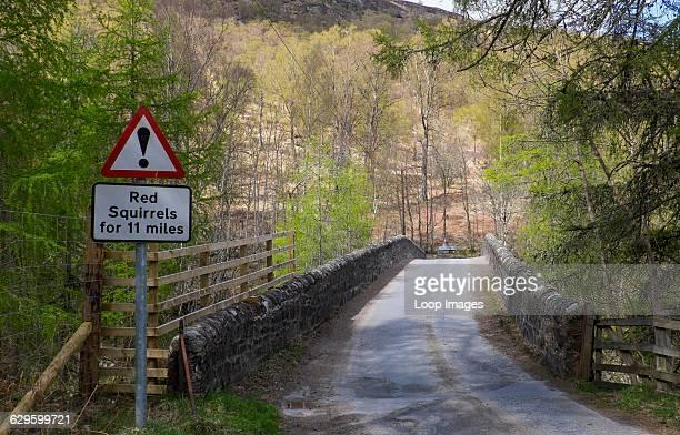 Road sign warning of red squirrels, Glenlyon, Scotland.