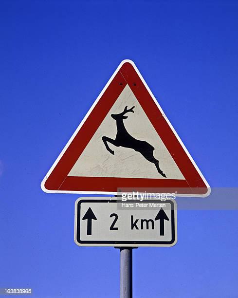 road sign, wild animal crossing, next 2 km