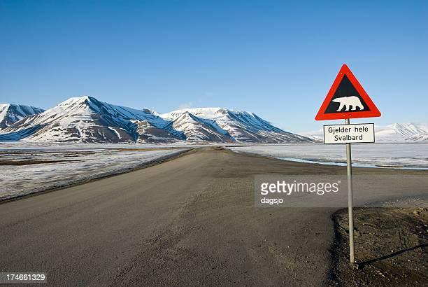 Road sign mit Eisbär