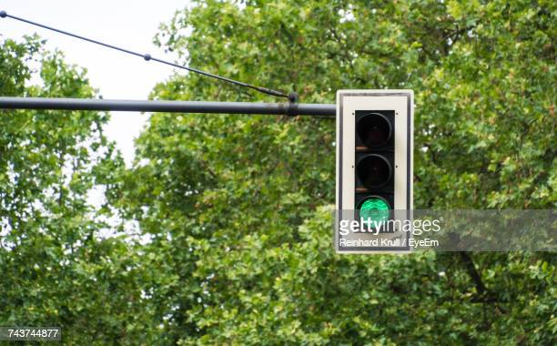 Road Signal With Green Light Against Trees