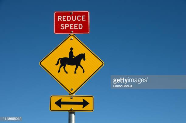 road signs warning drivers and cyclists to reduce speed as horse riders may be crossing - give way stock pictures, royalty-free photos & images