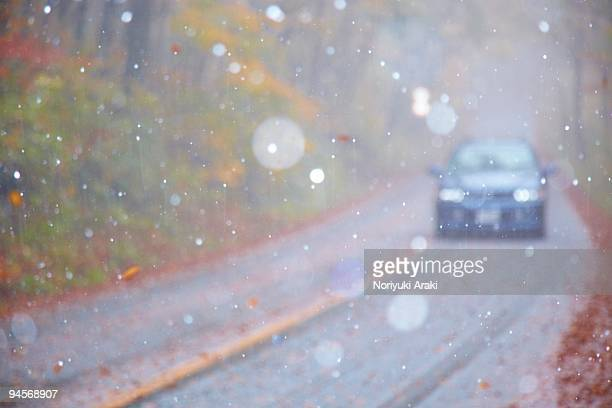 road, snow, and car of forest - tottori prefecture stock photos and pictures