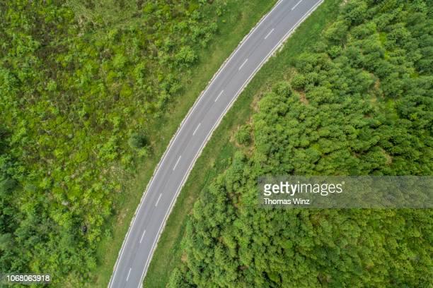 road through a forest from above - image stock-fotos und bilder