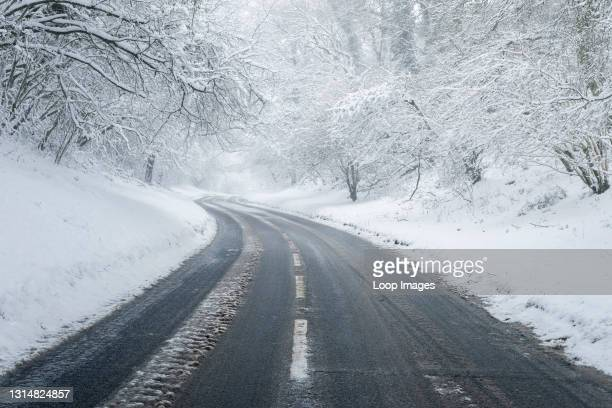 Road through a snowy woodland scene at Burrington Combe in the Mendip Hills Area of Outstanding Natural Beauty.