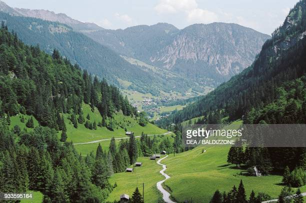 Road through a valley with conifers, Brandnertal, Vorarlberg, Austria.
