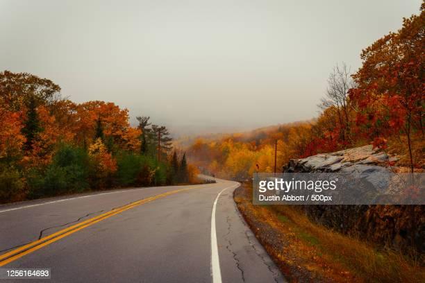 road through autumn forest, petawawa, renfrew, canada - dustin abbott imagens e fotografias de stock