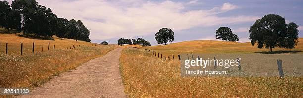 road through countryside - timothy hearsum stockfoto's en -beelden