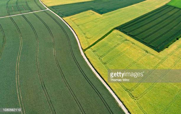 road through different shades of green from above - nature stock pictures, royalty-free photos & images